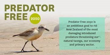 A picture containing text, bird  Description automatically generated
